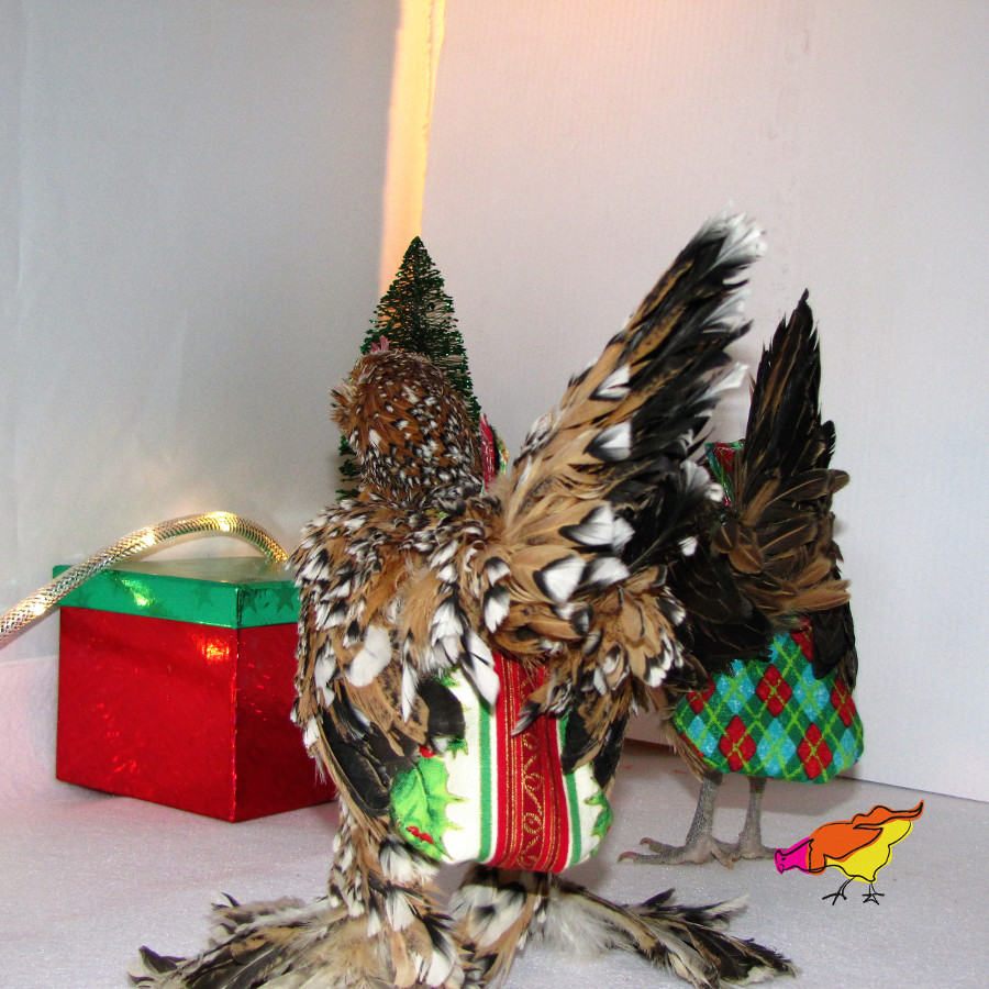 Collection des fêtes